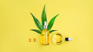 Cannabis Oil – forum - producent - opinie