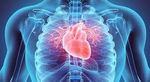 CardioActive – ceneo – forum – jak stosować