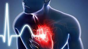 CardioActive – skład – gdzie kupić – cena