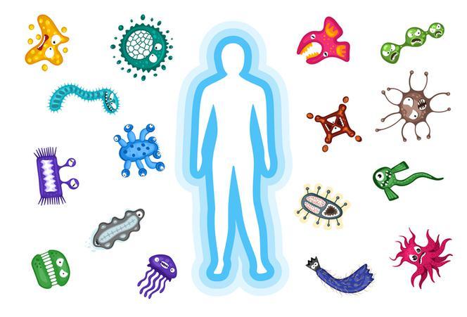 Immuvitan – wzmocnienie organizmu - gdzie kupić – apteka – allegro