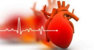 Presuren - Cardio - ceneo – efekty – sklep